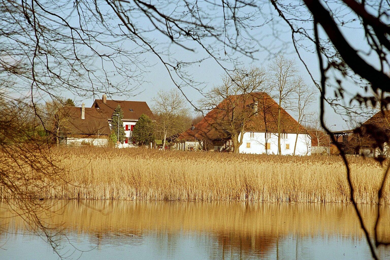 Unser Bauernhof direkt am Naturschutzgebiet
